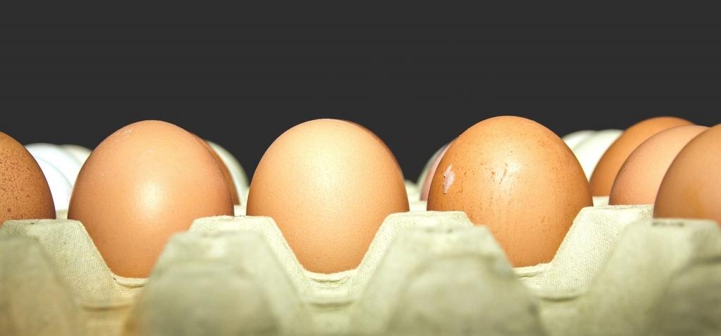 eggs-933399_1280